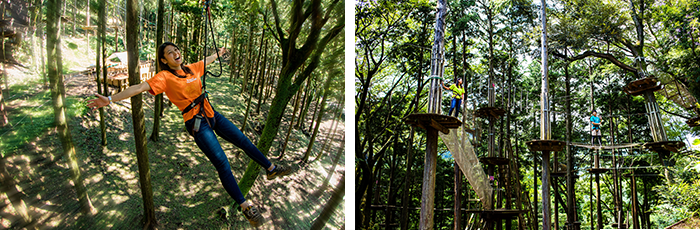 An easily accessible park in one of Japan's leading tourist resorts.