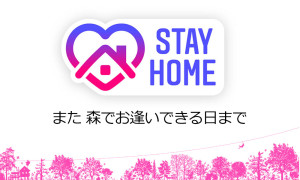 STAY-HOME-
